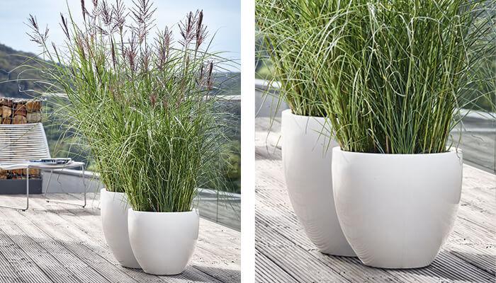 hochwertige pflanzgef sse in verschiedenen formen garpa. Black Bedroom Furniture Sets. Home Design Ideas